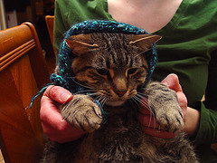 Parker Headscarf.jpg
