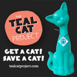 Tealcat.jpg