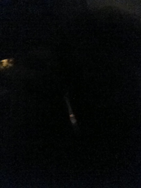 Party Plane Dark.jpg