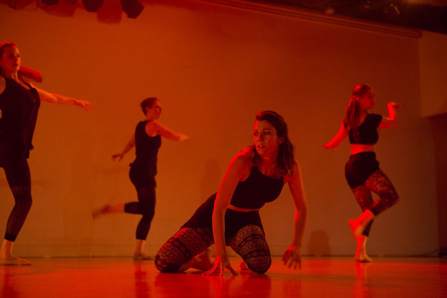 Collected and Conscious Dress Rehearsal, Thursday, June 11, 2015. Photos by Greg Inda